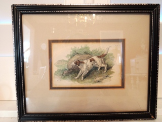 Antique Framed Book Plate Color Engraving The Setter Dog Painting