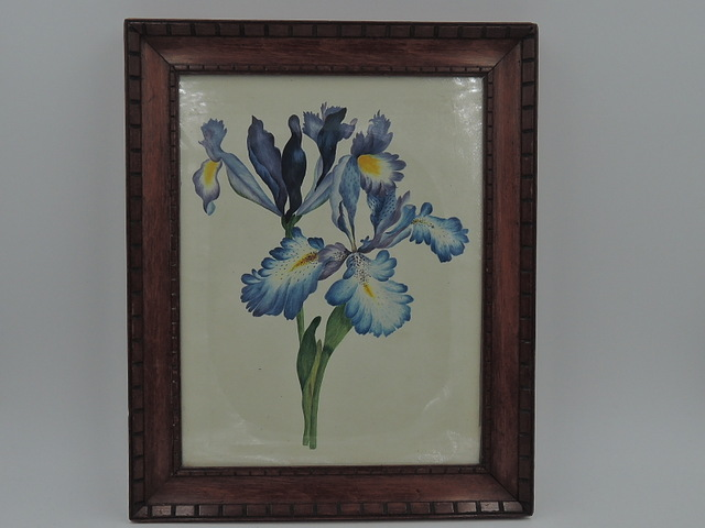 Antique English Watercolor Floral Blue Irises Framed Painting 19th C. Still Life