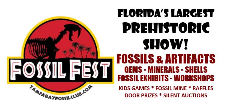 FossilFest2020