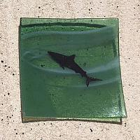 Fused Glass Transparent Shark Dish
